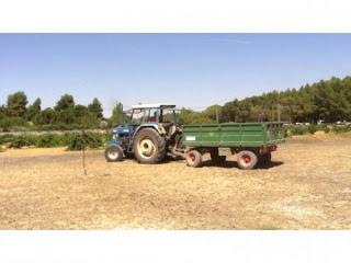 CALATAYUD. Concurso de destreza con tractor remolque (miércoles, 9)