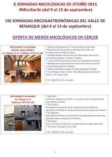 CERLER / VILLANOVA / BENASQUE. Jornadas Micológicas (hasta el domingo, 13)
