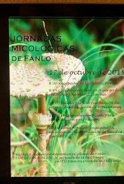 FANLO. Jornadas micológicas (sábado, 17)