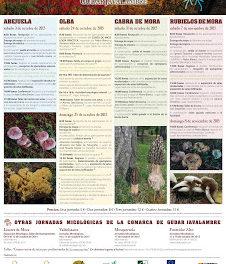 CABRA DE MORA. Jornadas micológicas Gúdar Javalambre (sábado, 31)