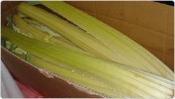 Jornadas de Degustación Aragonesas (del 2 al 17 de octubre)