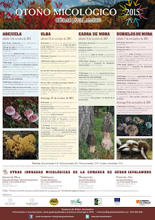RUBIELOS DE MORA. Jornadas micológicas Gúdar Javalambre (sábado y domingo, 7 y 8)