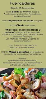 CINCO VILLAS. Jornadas micológicas (del 6 al 15)