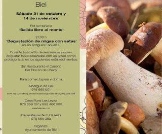 BIEL. Jornadas micológicas (sábado, 14)