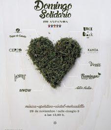 Domingo solidario en Veggie (domingo, 29)