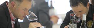 TERUEL. Aperitivos y cata de vino (miércoles, 16)