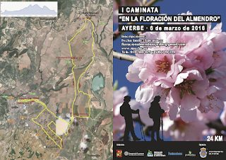 AYERBE. Caminata Floración del Almendro (domingo, 6)