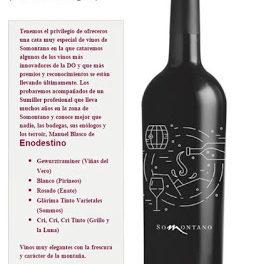 Cata de vinos Somontano (viernes, 11)