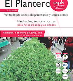 BARBASTRO. Fiesta del plantero (domingo, 1 de mayo)