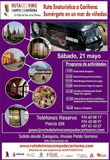 Excursión Ruta del Vino Campo de Cariñena (sábado, 21)
