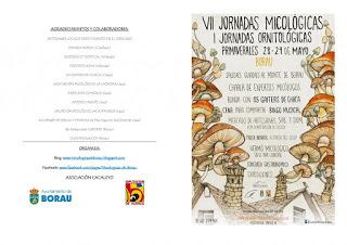 BORAU. VII Jornadas Micológicas Primaverales (28 y 29 de mayo)