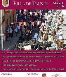 TAUSTE. Fiesta de la trashumancia (sábado, 7 de mayo)