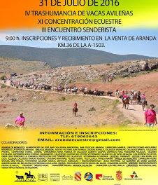 ARANDA DE MONCAYO. Fiesta de la trashumancia (domingo, 31)