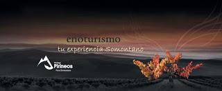 BARBASTRO. Enoturismo y maridaje de vino con productos del Somontano (fines de semana de agosto)