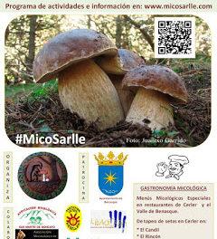 CERLER. XI Jornadas Micológicas de otoño (del 27 de septiembre al 2 de octubre)