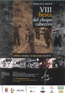 BADULES. VIII Fiesta del Chopo Cabecero (sábado, 22)