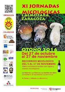 Jornadas micológicas L´Almozara (del 27 de octubre al 27 de noviembre)