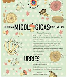 CINCO VILLAS. Jornadas Micológicas (fines de semana de octubre y noviembre)
