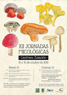 CANFRANC. Jornadas micológicas (días 15 y 16)