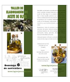 Taller de elaboración de aceite de oliva (domingo, 6)