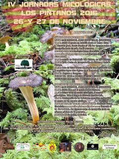 LOS PINTANOS. Jornadas micológicas (días 26 y 27)