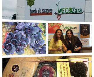 VILLAMAYOR DE GÁLLEGO. Encuentro La huerta ecológica y la truficultura (miércoles, 4)