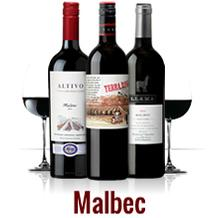 Cata de vinos de uva Malbec de Argentina en TOME VINOS (viernes, 3)