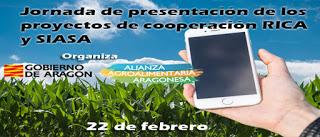 Presentación de proyectos de cooperación (miércoles, 22)