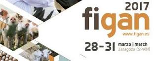 Feria Figan (del 28 al 31 de marzo)