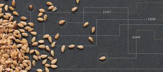 """Seminario """"Agricultura 4.0: Tecnologías Digitales para el sector agroalimentario"""" (del 9 de marzo al 20 de abril)"""