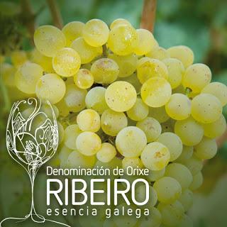 Cata de vinos de uva Treixadura (Galicia) (viernes, 10)