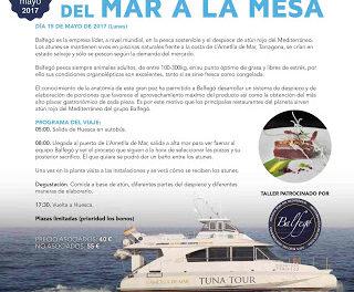 HUESCA. Talleres Huesca la Magia de la Gastronomía 2017 (lunes, 15)