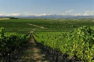 Degustación de vinos D.O. Somontano en VINOS BOTICA (sábado, 27)