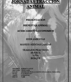 SAN MATEO DE GÁLLEGO. Jornadas de tracción animal (27 y 28)