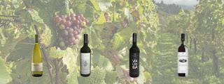 Cata de vinos (jueves, 15)