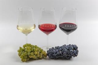 SALAS BAJAS. Cata de vino y uvas en ENATE (sábado, 2)