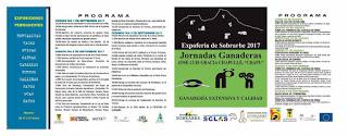 AÍNSA. XXXII Expo-feria de Sobrarbe (del 1 al 3)