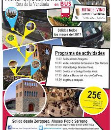 Excursión Ruta del Vino Campo de Cariñena (sábado, 2)