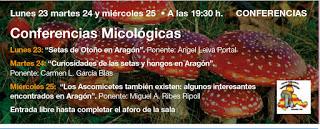 Conferencias micológicas (del 23 al 25)