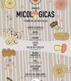 LOBERA DE ONSELLA. Jornadas micológicas de las Cinco Villas (del 13 al 15)