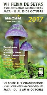 JACA. Jornadas micológicas (del 12 al 15)