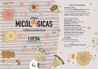 LUESIA, ORES, SOS. Jornadas micológicas de las Cinco Villas (sábado, 4)