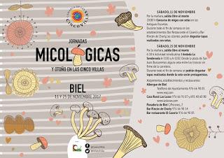 SÁDABA, UNCASTILLO, BIEL. Jornadas micológicas de las Cinco Villas (sábado, 11)