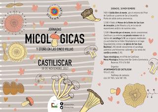 CASTILISCAR, LONGÁS. Jornadas micológicas de las Cinco Villas (sábado, 18, y domingo, 19)