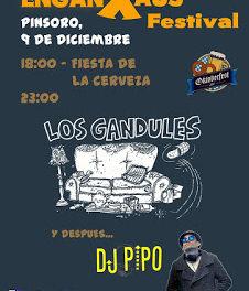 PINSORO. Fiesta de la cerveza (sábado, 9)