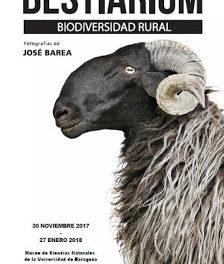 Exposición 'Bestiarium. Biodiversidad rural' (hasta 27 de enero)