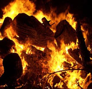 SÁSTAGO. Fiestas en honor a San Antón (del martes, 16, al jueves, 18)