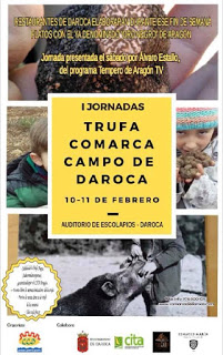 DAROCA. Jornadas de la Trufa (sábado, 10, y domingo, 11)