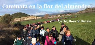 AYERBE. Caminata en la flor del almendro (domingo, 25)