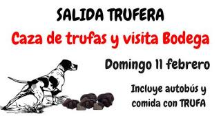 Caza de trufas y visita Bodegas Ignius (domingo, 11)